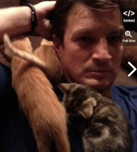 I'm not above using Nathan  Fillion covered in kittens to get people to read my post.